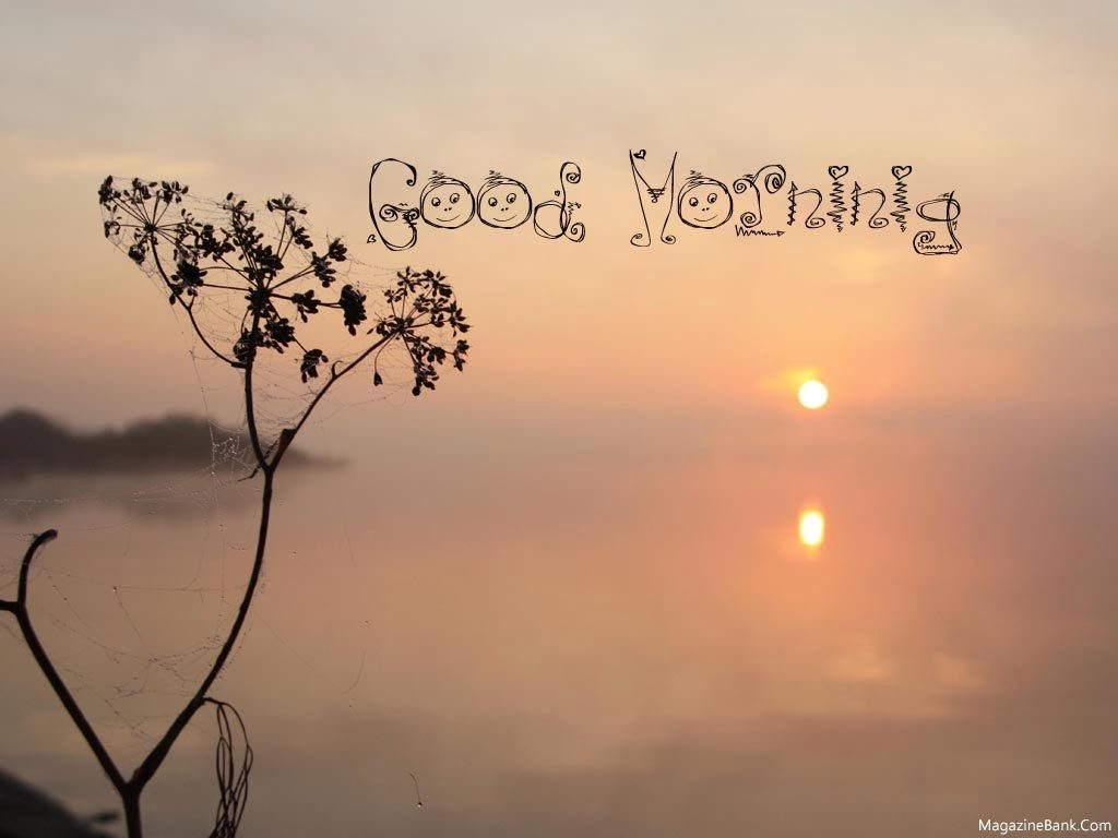 1138 Beautiful Good Morning Messages Quotes With Pictures Facebook