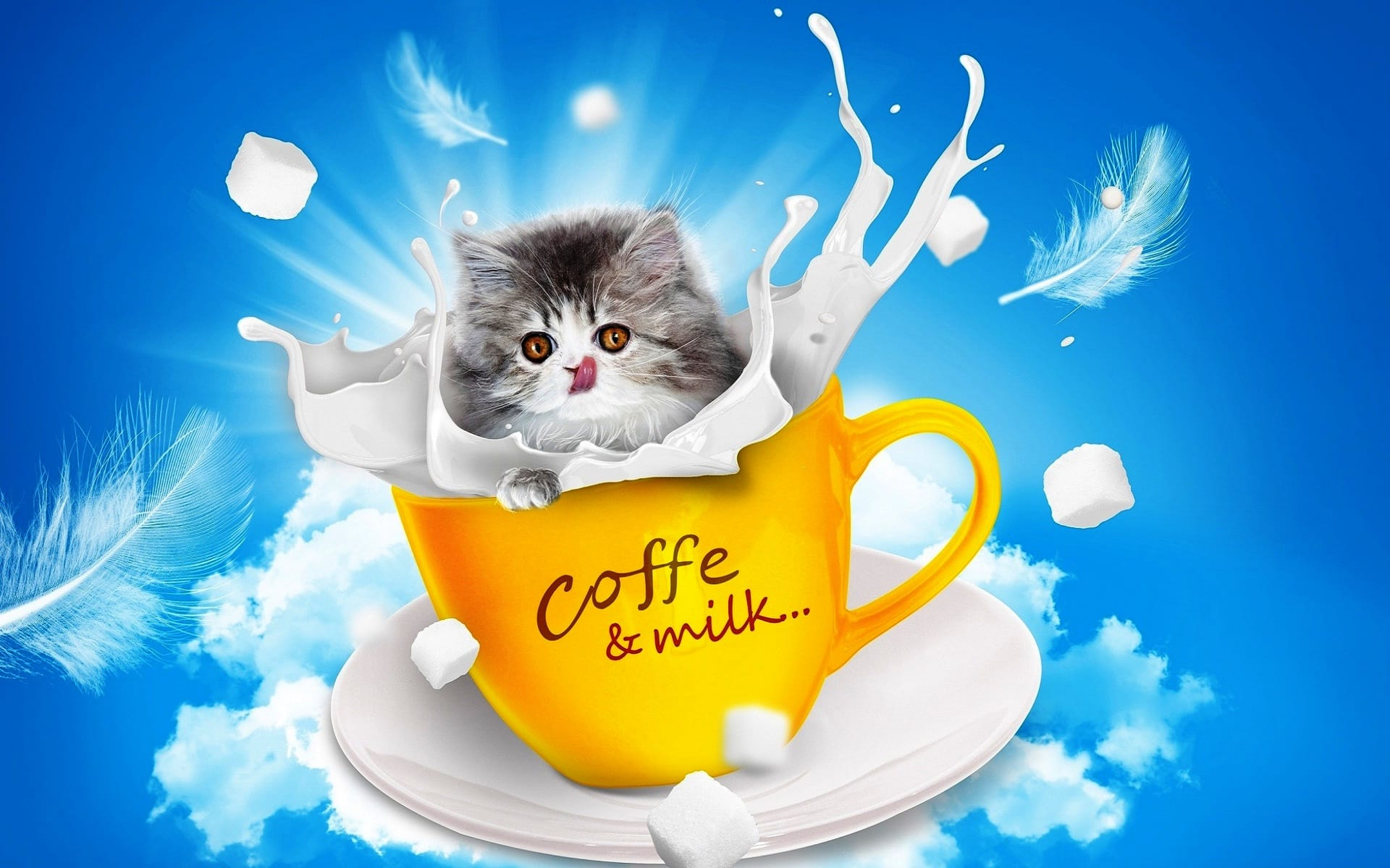 3052-Good-Morning-Coffee-Funny-Wallpapers-Download-Facebook-Whatsapp