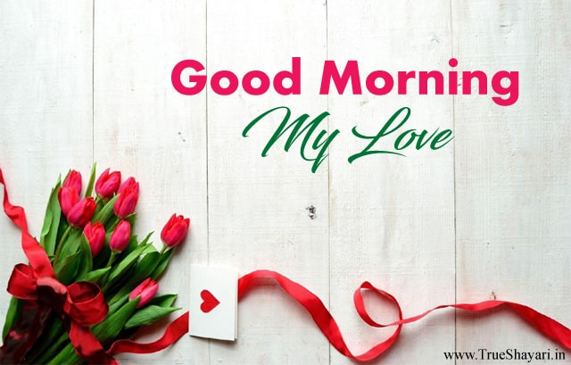 3460 good morning love greetings facebook whatsapp status good 3460 good morning love greetings facebook whatsapp status m4hsunfo