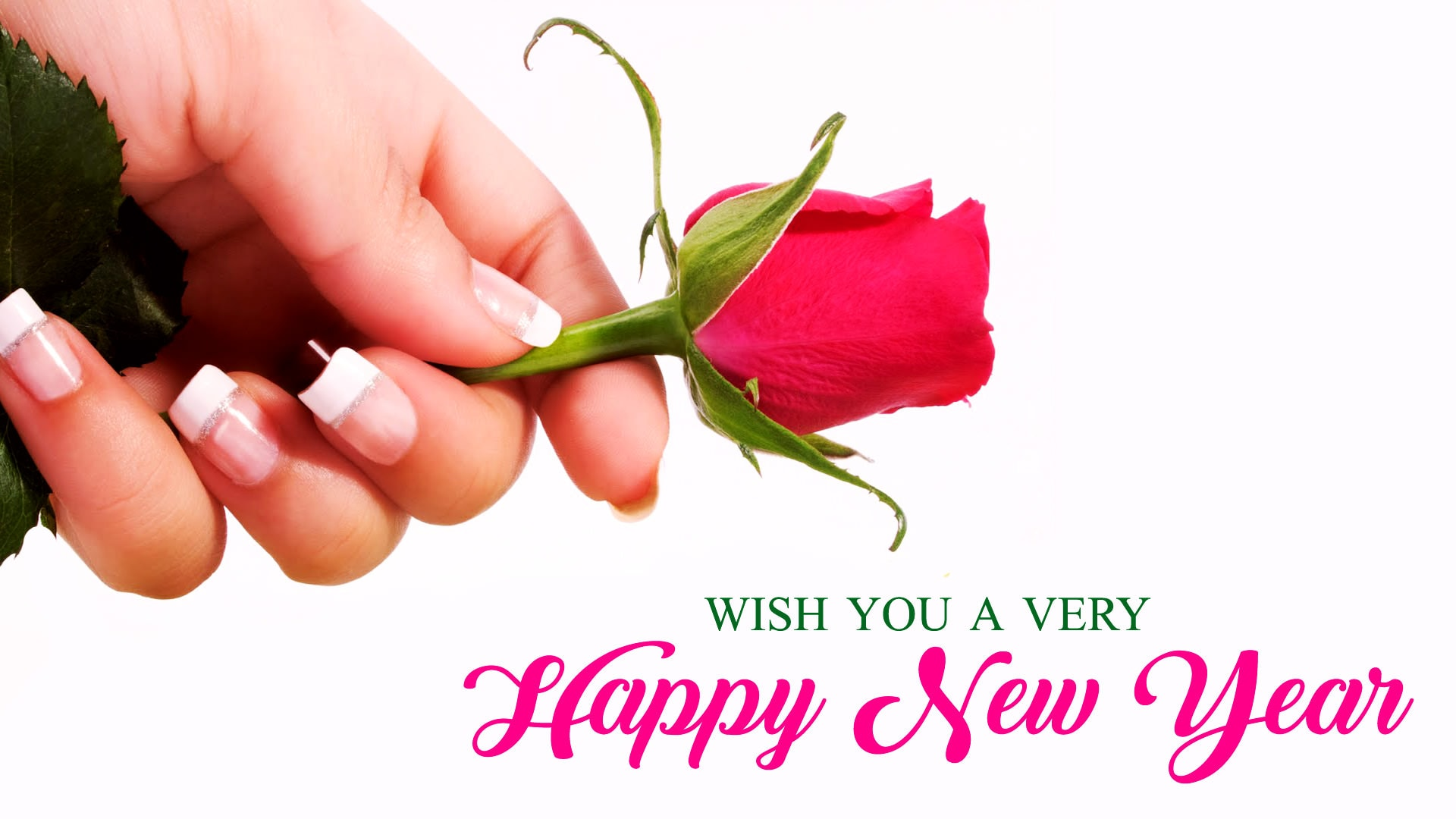 4265 happy new year wishes wallpaper with rose facebook whatsapp status new year wishes