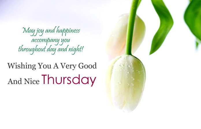 4307 Happy Thursday Quotes And Sayings Facebook Whatsapp Status