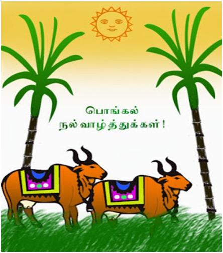5473 thai pongal wishes in tamil happy pongal images messages 5473 thai pongal wishes in tamil happy pongal m4hsunfo