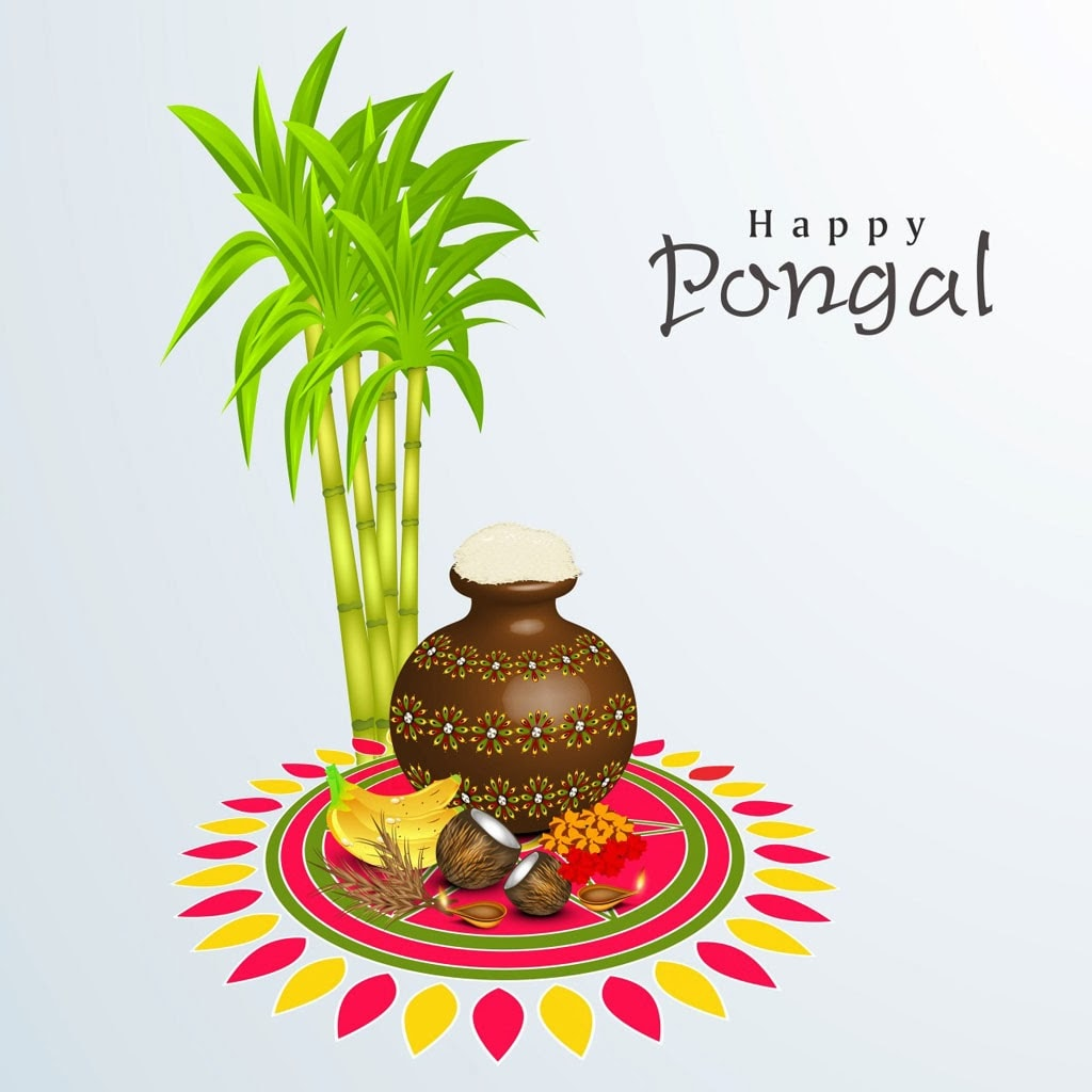 5613 Happy Pongal Greetings Sms Messages In Hindi Facebook Whatsapp