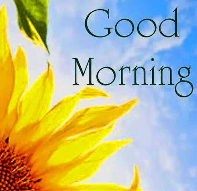 Inspirational Images Of Good Morning For Whatsapp