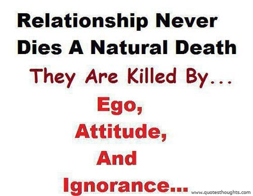 Relationship Quotes Thoughts Attitude Ego Ignorance Best Great Nice