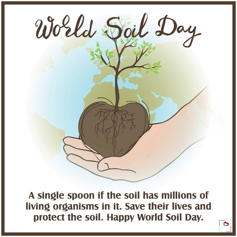 World Soil Day Special Quotes, World Soil Day Special Quotes, Message & Theme, world soil day hindishayari